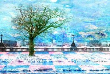 Hamburg Ueberschwemmung Klimakatastrophe Baum Wasser