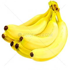 Bananen Staude Obst Frucht Essen Food