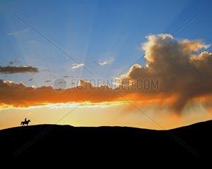 horseback riding at sunrise