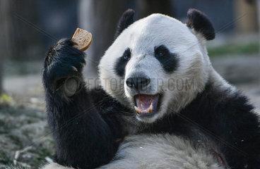 XINHUA PHOTO WEEKLY CHOICES