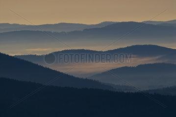 Morgenstimmung im Boehmerwald