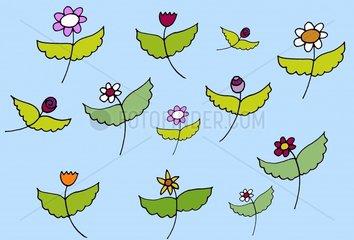 Engelsblumen