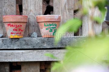 Oldenburg  Deutschland  Tonblumentoepfe in einem Garten