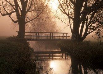 Nebelstimmung mit Bruecke  die sich im Bach spiegelt