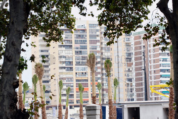 Palmen und Haeuser im Malaga