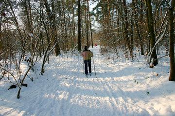 Winter in Berlin. Schilaufen im Wald