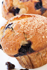 Blueberry muffin as closeup on white background