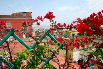 Neapel Dachterrasse im Spanische Viertel