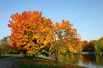 Landwehrkanal im Herbst