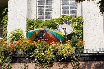 Balkon mit Blumen ueberfuellt