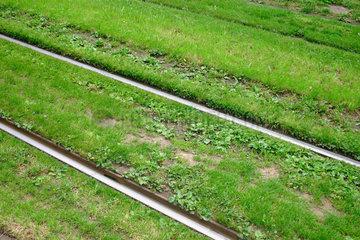 Schweiz. Basel - Strassenbahn Gleise in Basel