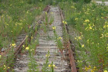 Stillgelegte Bahntrasse