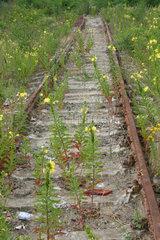 Nachtskerze und Stillgelegte Gleis