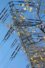 Herbstlaub und Strommast