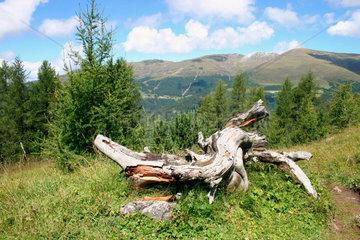 Italien - Suedtiroler Landschaft im Villnoesstal.