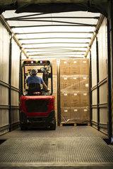 Man loading cardboard boxes in lorry