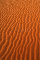 Libyen  Sahara  Sandduenen  Wueste