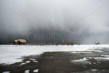 Pfahlhaeuser im Winter am Strand von St. Peter-Ording