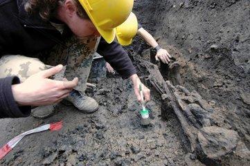 Mittelalterliche Ausgrabungen