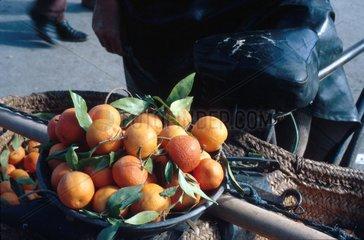 Frische Mandarinen im Korb