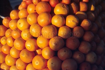 Aufgehaeufte Orangen