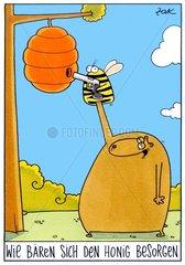 Wie Baeren sich den Honig besorgen