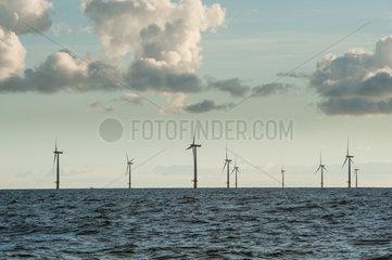 Deutschland  Offshore-Windpark EnBW Baltic 1 in der Ostsee