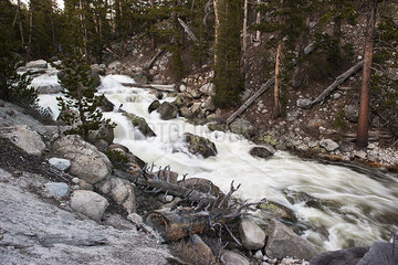 Stream flowing over rocks  Yosemite National Park  California  USA