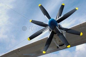 Propeller mit acht Rotorblaettern an einer Antonov An 22 Die russische Antonov An 22 ist das groesste propellergetriebene Transportflugzeug der Welt Technische Daten 57 31 m Laenge  64 40 m Spannweite
