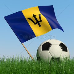 Soccer ball in the grass and the flag of Barbados against the blue sky. 3d