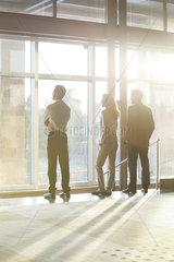 Business entrepreneurs contemplate start-up potential