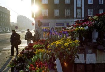 Blumenstand an einer Strassenkreuzung in Posen  Polen