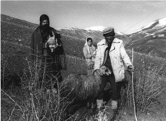 Hirten Tuerkei Kurdistan