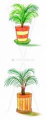 Topfpflanzen