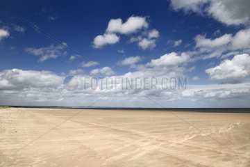 High wind on wide long St Andrews West Sands beach with blue sky and white clouds St Andrews Fife Scotland UK