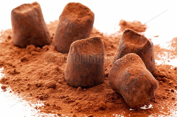 Sweet chocolate truffle with cocoa powder as closeup on white background