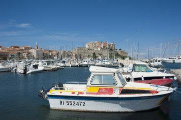 Hafen in Calvi