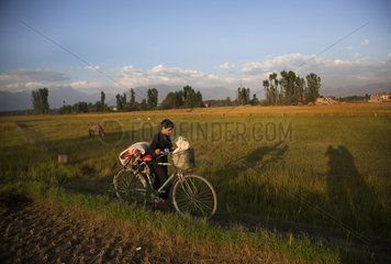 INDIA-KASHMIR-SRINAGAR-PADDY HARVEST SEASON