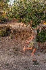 Seilspringen unter dem Feigenbaum