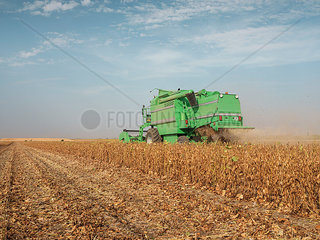 Serbia  Vojvodina  Combine harvester in soybean field