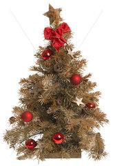 alter vertrockneter Christbaum aus dem Vorjahr