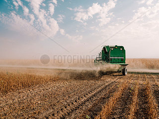 Serbia  Vojvodina  Combine harvester in soybean field