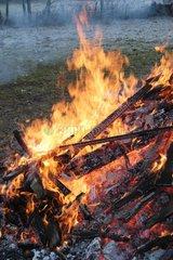 Feuer im Winter