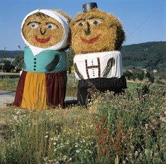 Landwirtschaft im Sommer