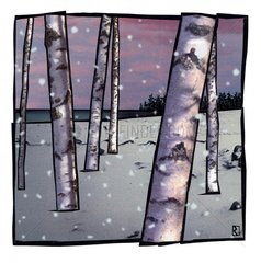 Birken Wald Baeume Schnee
