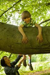 Potsdam  Deutschland  ein Junge klettert auf einen Baum  die Mutter passt auf