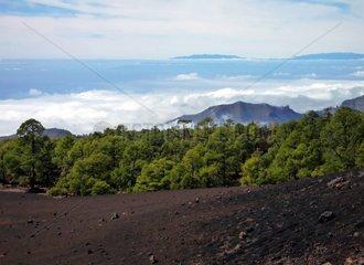 Kanarische Inseln Teneriffa Nationalpark del Teide Blick nach Gomera