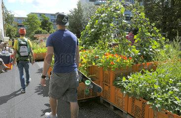 Urbanes Gartenprojekt: Gartendeck auf St. Pauli