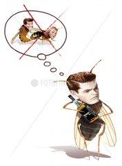 Bienen Befruchtung