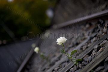 Memorial Grunewald  75th Anniversary Of Holocaust Deportations